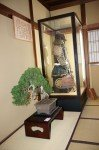 Kanazawa le mercredi
